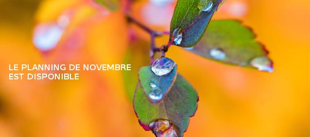 Planning de Novembre 2016