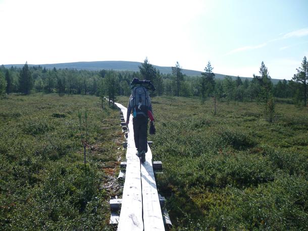 road-trip-finlande3 (26)